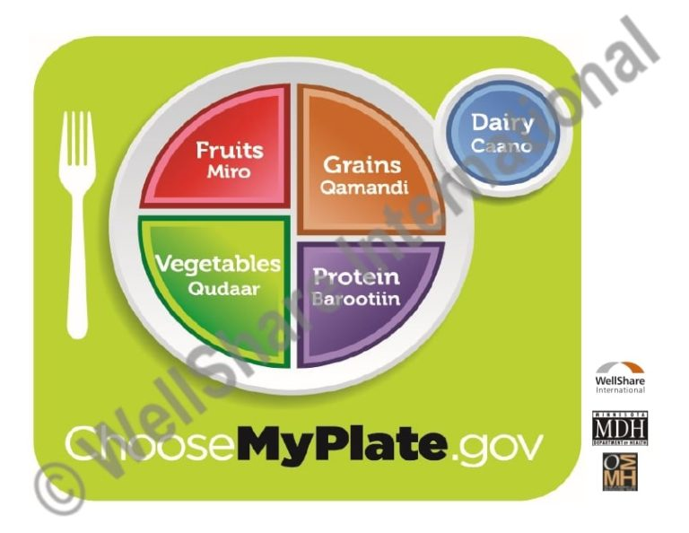 MyPlate - Somali - Downloadable