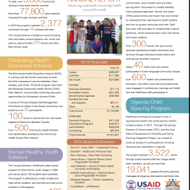 2015 WellShare International Annual Report