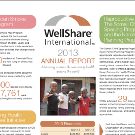 2013 WellShare International Annual Report