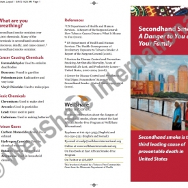 Risks of Secondhand Smoke Brochure - English