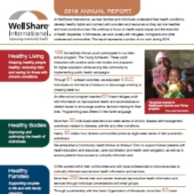 2016 WellShare International Annual Report