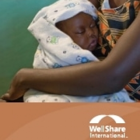 2011 WellShare International Annual Report