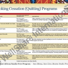 Smoking Cessation (Quitting) Programs – English