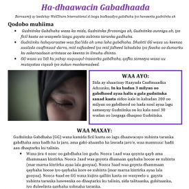 FGC Fact Sheet - Somali - Downloadable